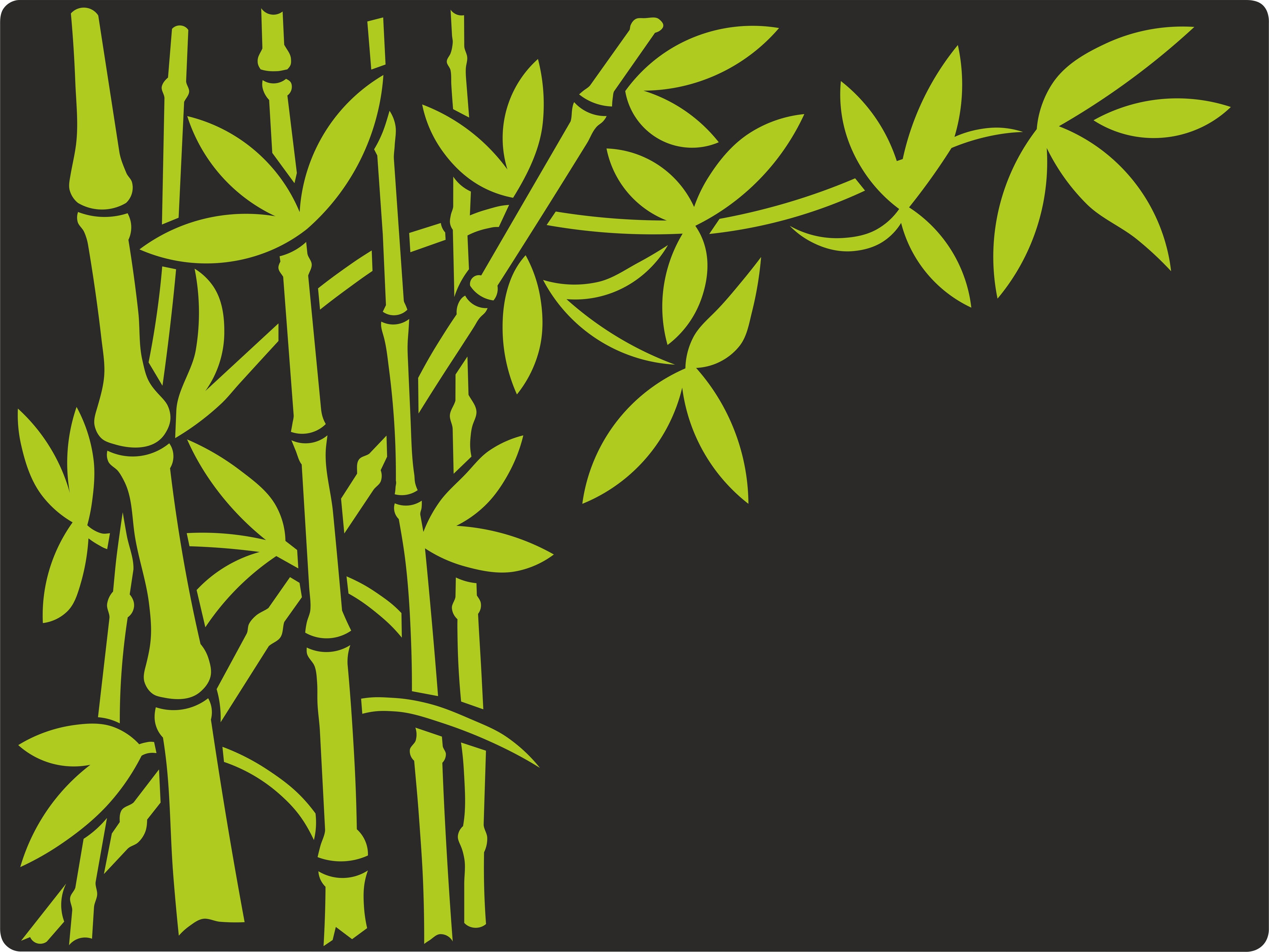 BambusNR1
