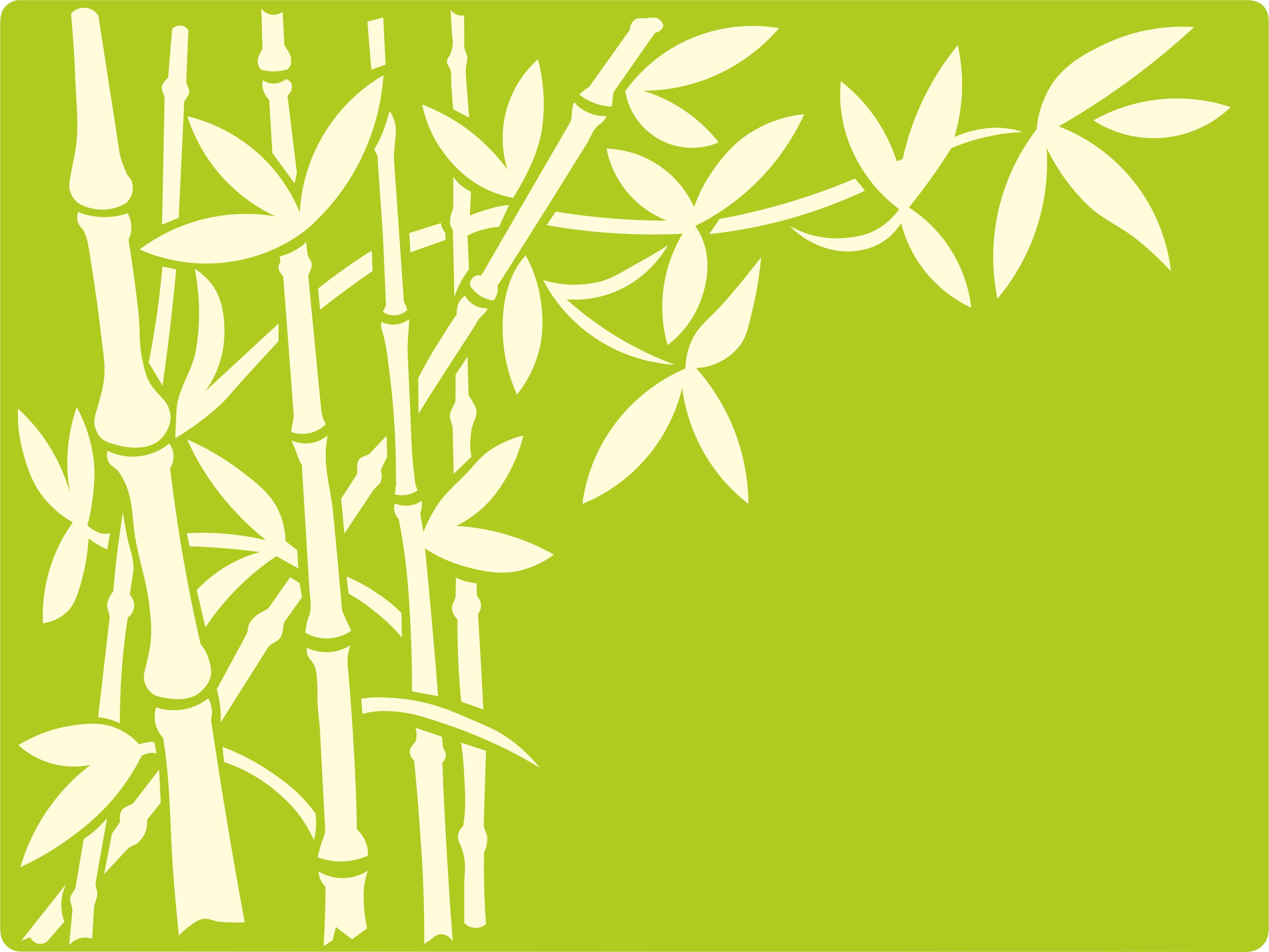 BambusNR4