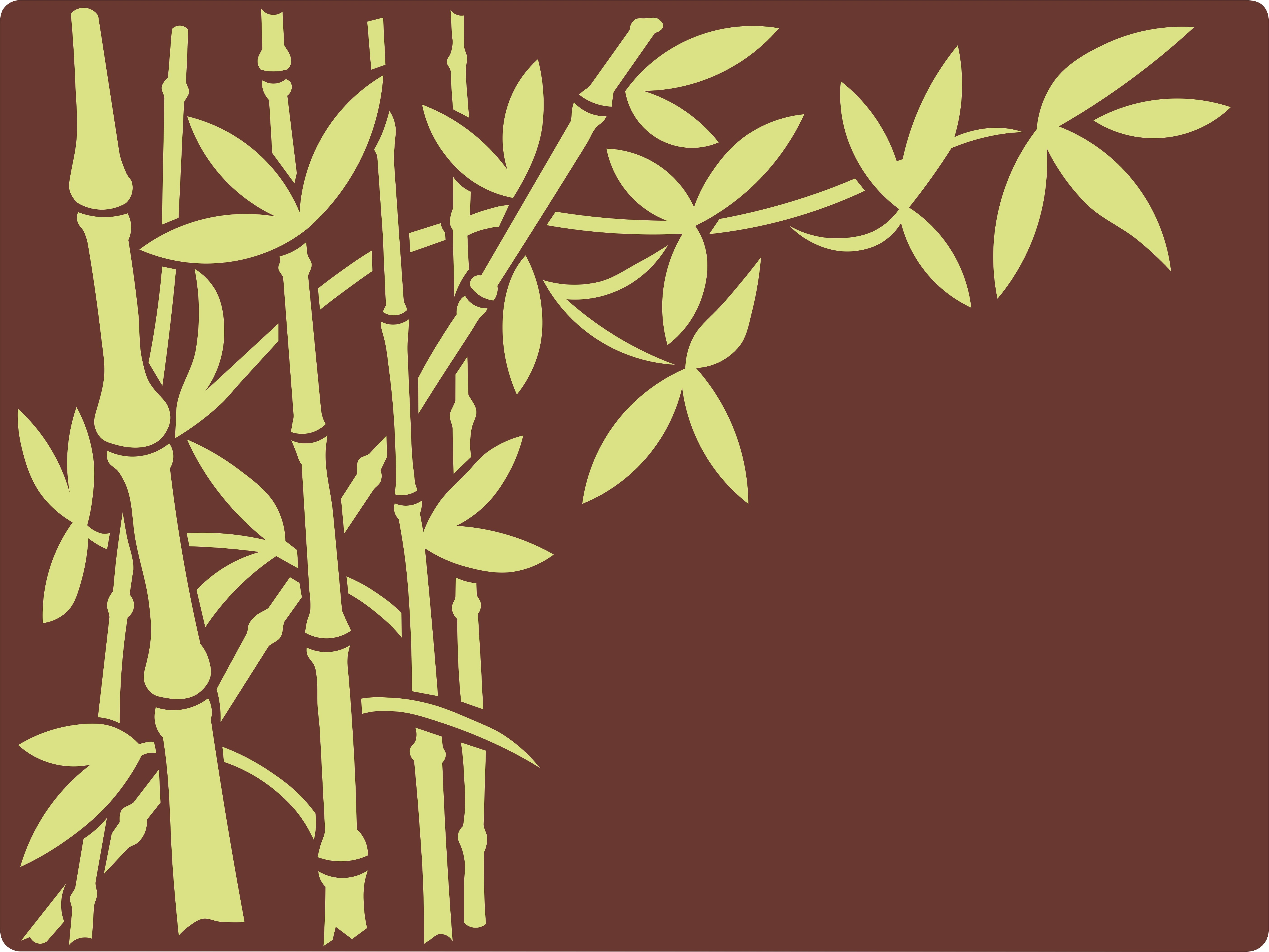 BambusNR5